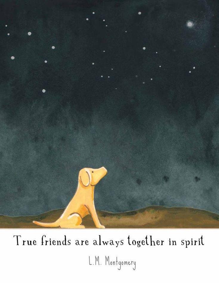 True friends . . . #DogMemorial