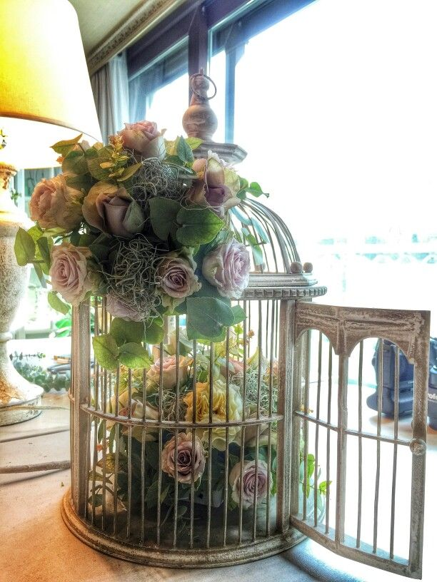 birdcage flower