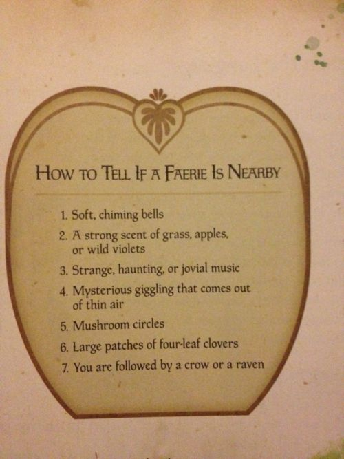 So cute! Little girls would love this.  How to tell if a Fairy is nearby