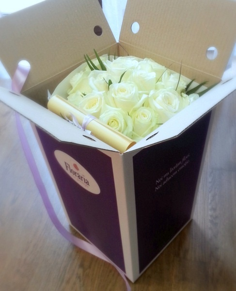19 white purity roses