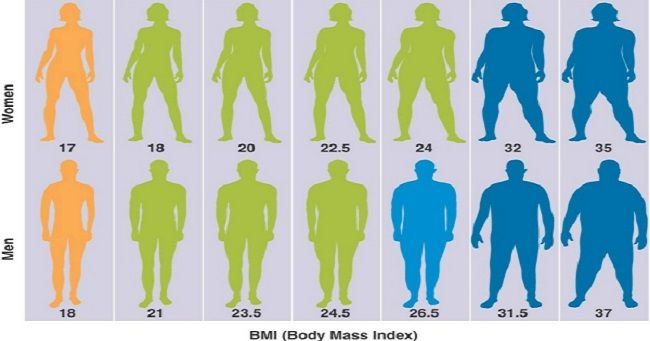 The Height-Weight chart is a very basic tool to check if you fall under normal ranges or not. Having a balanced height to weight ratio indicates good health.