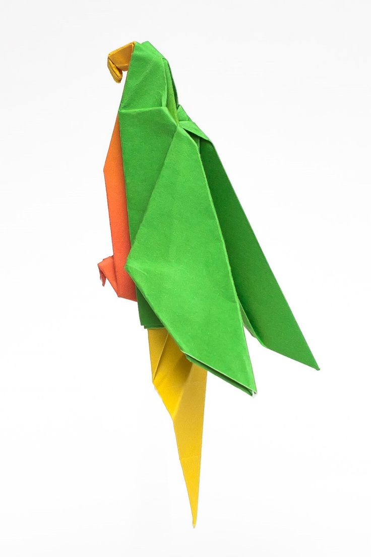 origami parrot instruction and printable pattern pdf