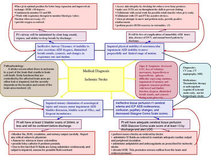 Resultado de imagen para concept map nursing