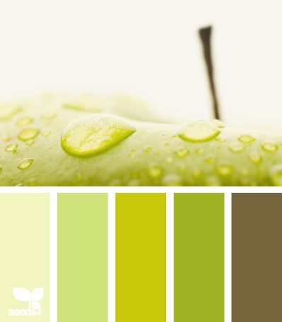 living room bright color combo, use the lime green for accent wall.