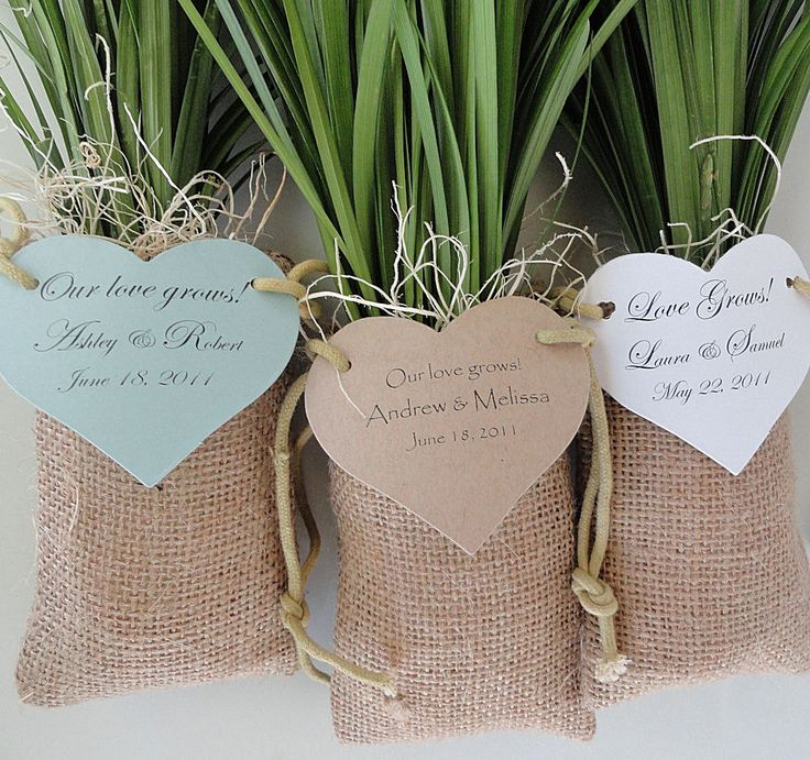 Lily Grass Plant Wedding Favors in Burlap Bags. Find more wedding favour ideas here http://raspberrywedding.com/category/raspberry-wedding/decoration/stationeryandfavours/