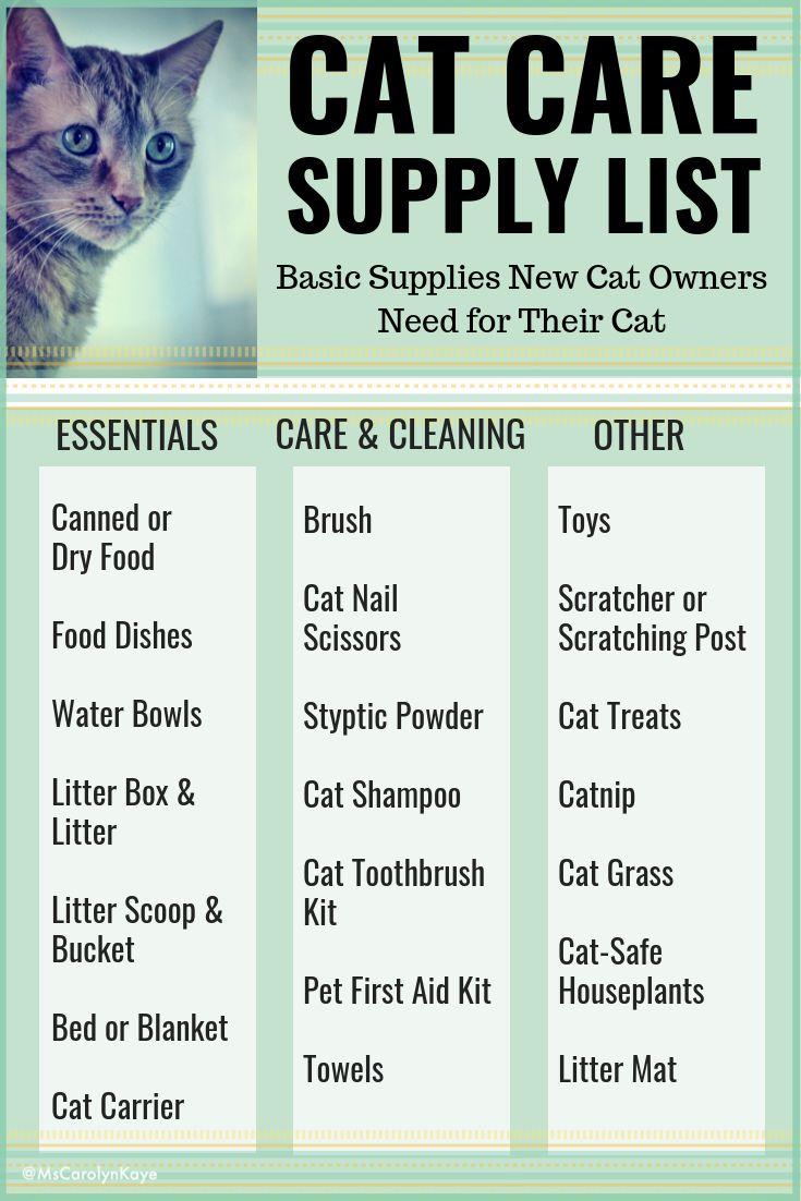 Cat Care Supplies List In 2020 Cat Essentials Cat Care Tips