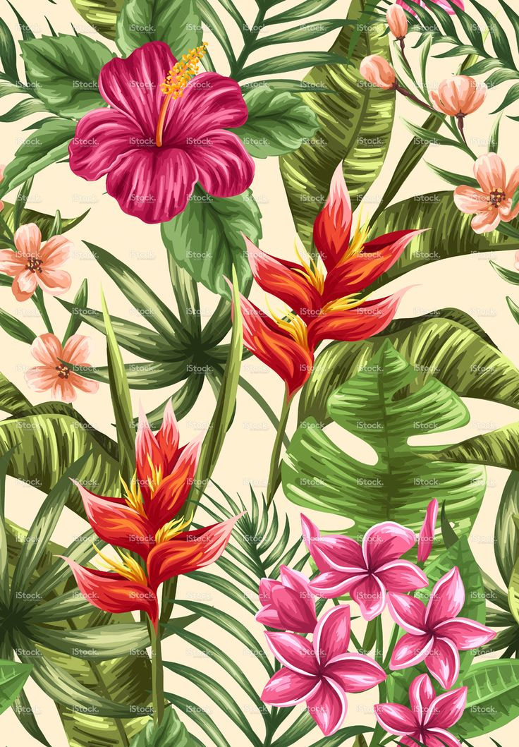 Tropical Floral Seamless Pattern With Plumeria And