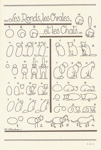 How to draw cats: Animals, The Cat, How Drawings Cat, Cat Illustrations, Les Rond, Cat Art And Crafts, Art Tutorials, Drawing, How To Drawings Cat