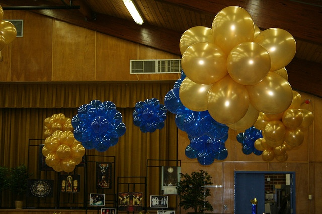 23 best balloon cloud 9 and balloon topiary images on for Balloon cluster decoration