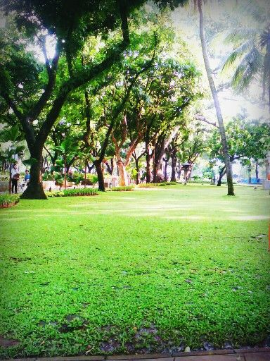 Taman Suropati ( Suropati park ) Jakarta Id - Indonesia