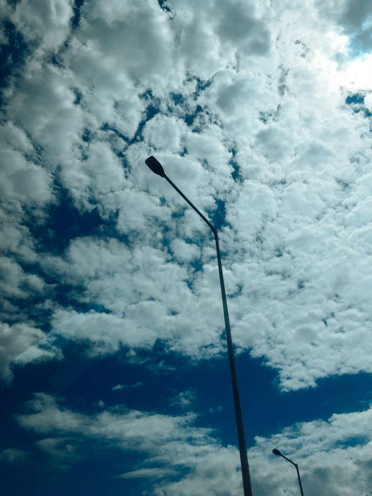 #sky #tree #leaf #cloud #blue #white #ocean #sea #traffic #하늘 #바다 #해양 #luckee