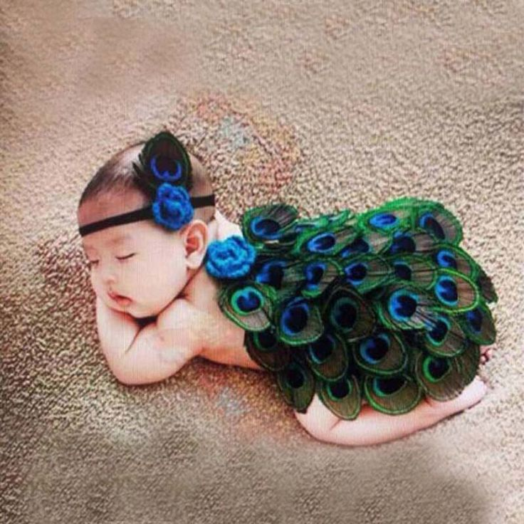 Peacock Style Newborn Baby Photography Props Animal Feather Design Photo Props with Headband New Hot Sale  Costume Outfit H207