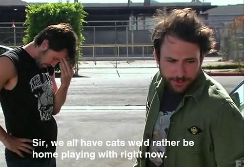 sir, we all have cats we'd all rather be home playing with right now.