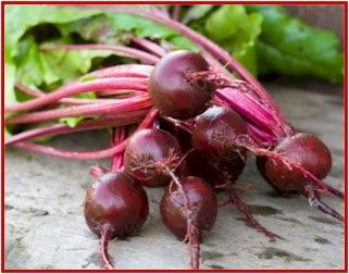 Juicing Beets: Discover the amazing blood cleansing  power of beets that rids the body  of many unwanted ailments.