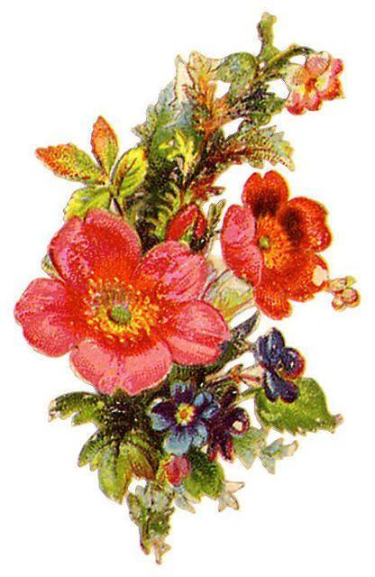 Flowers442