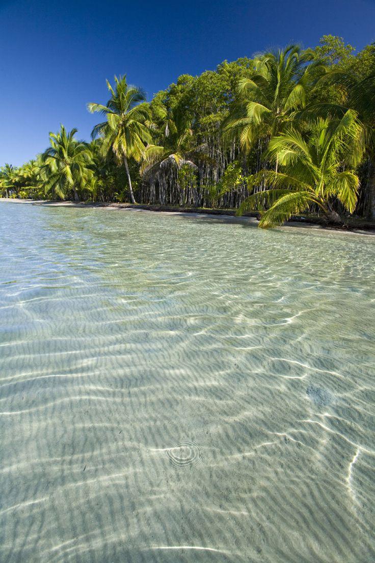 Aguas cristalinas y estrellas de mar en la playa de las Estrellas en Panamá