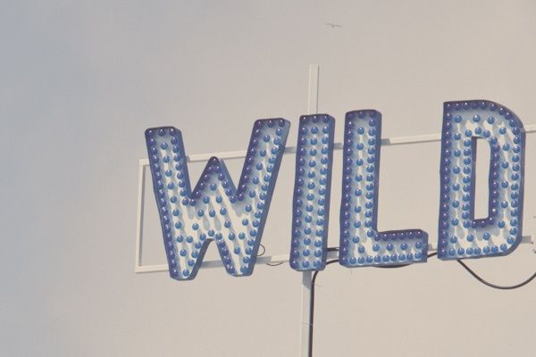 Wild | /andwhatelse/