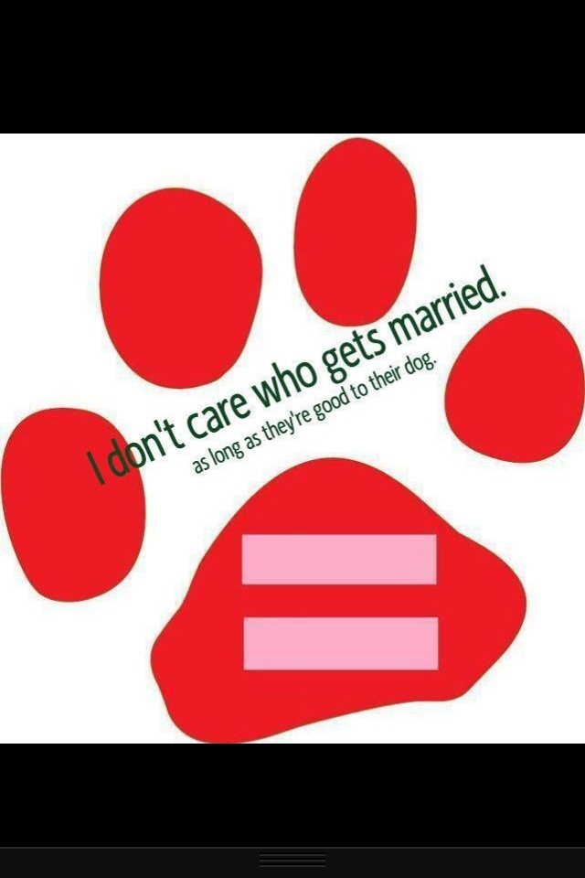 Animal and gay rights