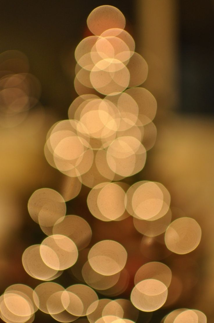 Christmas tree bokeh Photo - Visual Hunt