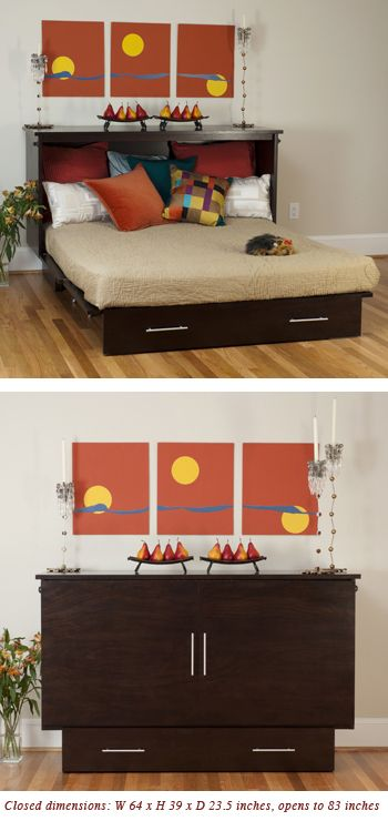 Love this alternative to a futon, hide a bed, or murphy bed.  The zzz chest