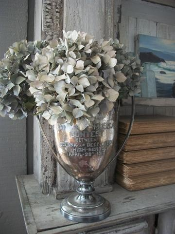 hydrangeas in a silver trophy cup...need i say more???