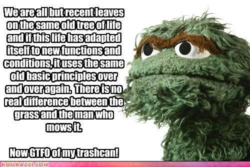 60 Best Grouch Images On Pinterest