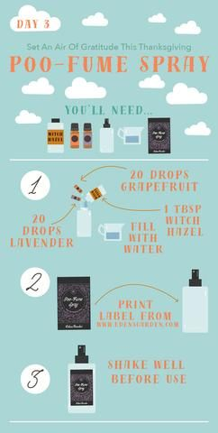 DIY Poo-Fume for the Holidays!