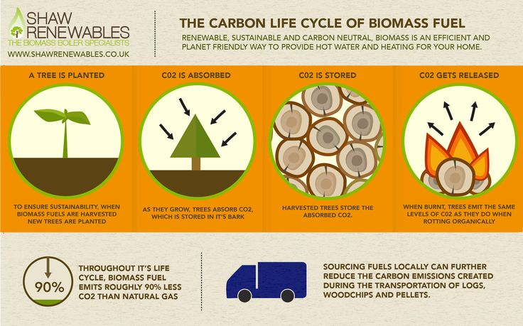 The Carbon Life Cycle of Biomass Fuel. Biomass, logs, woodchip and pellets. The carbon neutral fuel.