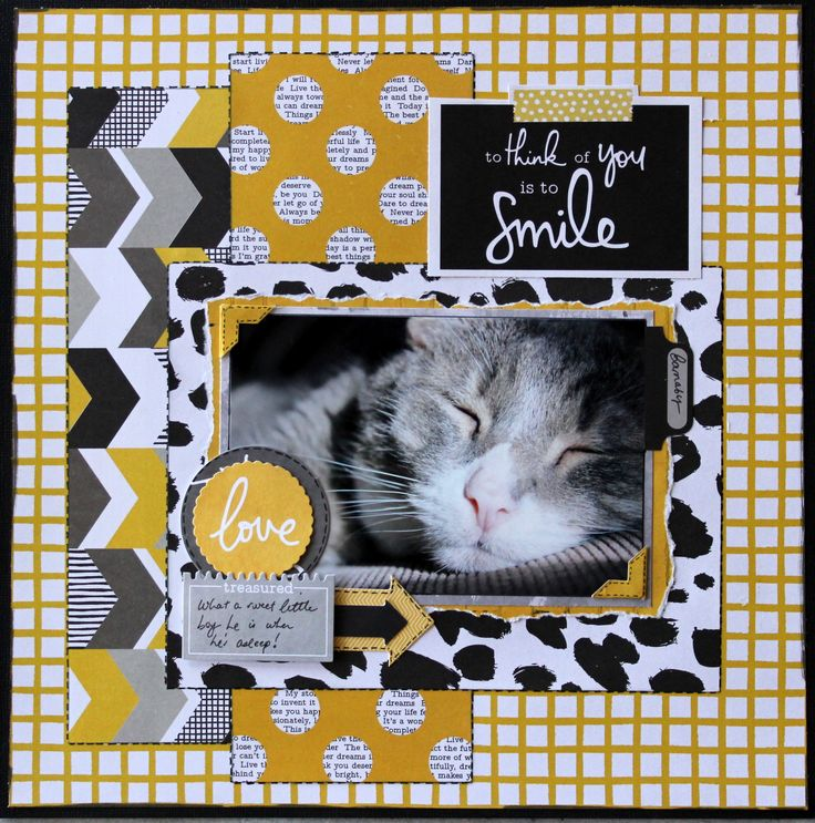 To Think Of You Is To Smile - KaiserCraft Shine Bright scrapbooking layout of my cat Barnaby #kaisercraft @kaisercraft
