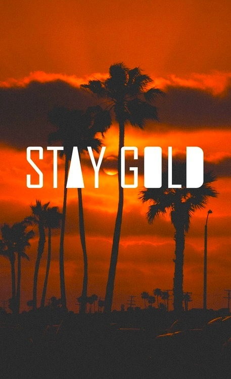 1000 images about stay gold ponyboy on pinterest boys for Stay gold ponyboy