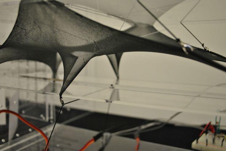 Kinetic Tensile Membrane Studies (Model Fabric + Arduino ...