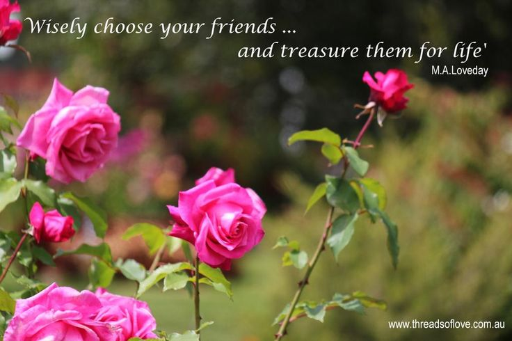 Friends are treasures...visit http://www.facebook.com/threadsoflove.com.au… for more  #Friendship #Booksgs #PureLovesmiracles