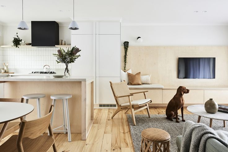 Modern Studio/ Interiors