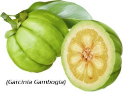 Garcinia Cambogia NZ reviews, ratings and offers on this hugely popular diet supplement. We only select 100% Pure Garcinia Cambogia extract with high HCA.