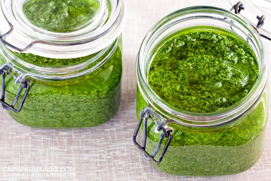 Basil Pesto Recipe. This made about 5 cups of pesto. I froze most of it to use later in the year. Much more potent than the store bought stuff. Excited to try it out.  Would use the BIG blendtec blender carafe next time.