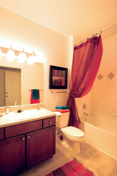 Apartment Bathroom Designs Model Awesome Decorating Design
