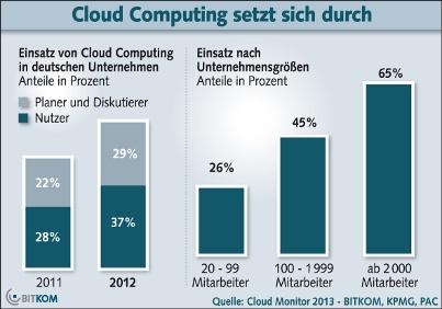Mehr als jedes dritte Unternehmen setzt auf Cloud Computing, Februar 2013