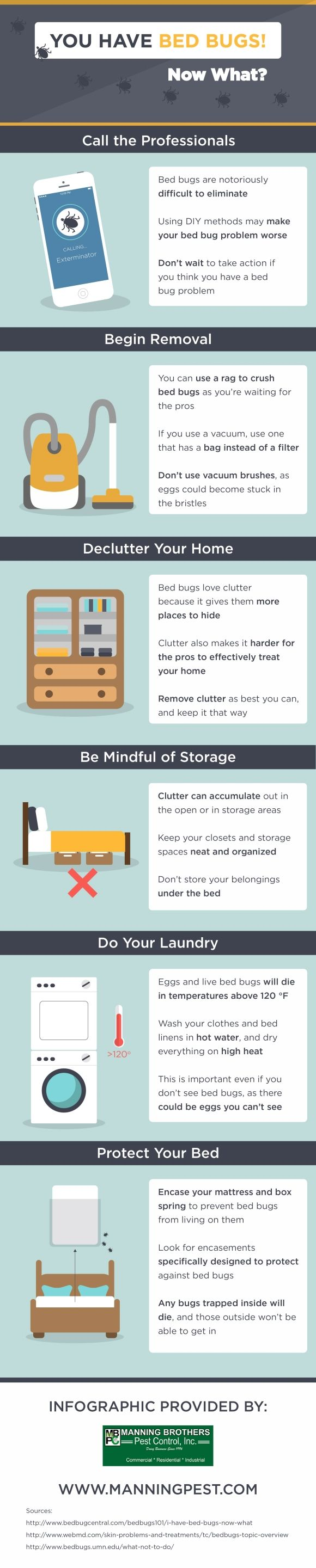 Your teenagers aren't the only ones that love clutter; bed bugs love it too! Click over to this infographic from a pest control company near Fort Lauderdale to find facts about bed bugs and what to do if you find them in your home.