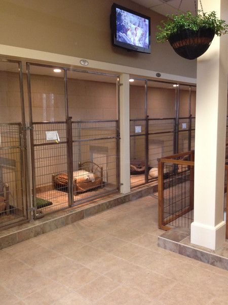 Dog and Large Animal Custom Enclosures - Mason Company Gallery