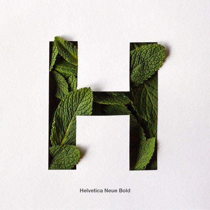 Helvetica Neue Bold