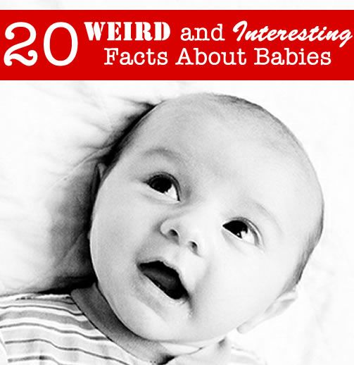 20 weird and interesting facts about babies! #babies  Did you know that a newborn baby has more bones than you?