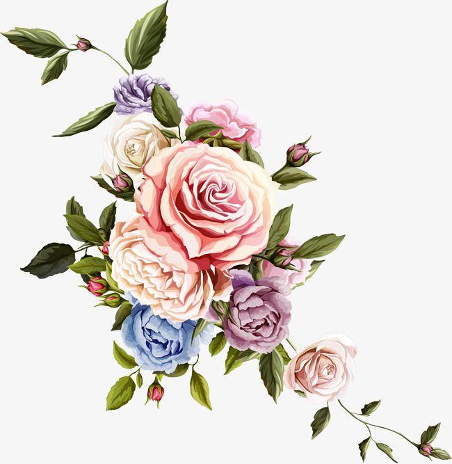 Beautiful Flower Flower Plant Flowers Png And Vector Vintage Flowers Digital Flowers Rose Drawing