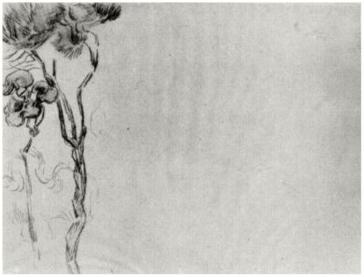Vincent van Gogh: Two Trees, Saint-Rémy: March-April, 1890 (Amsterdam, Van Gogh Museum) F 1590r, JH 1944