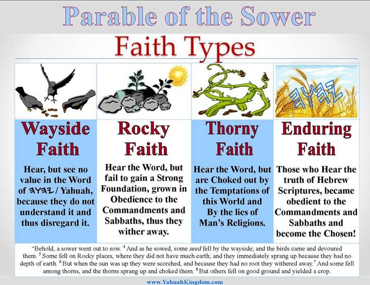 Jesus' Parable of the Sower (Sunday School Lesson)
