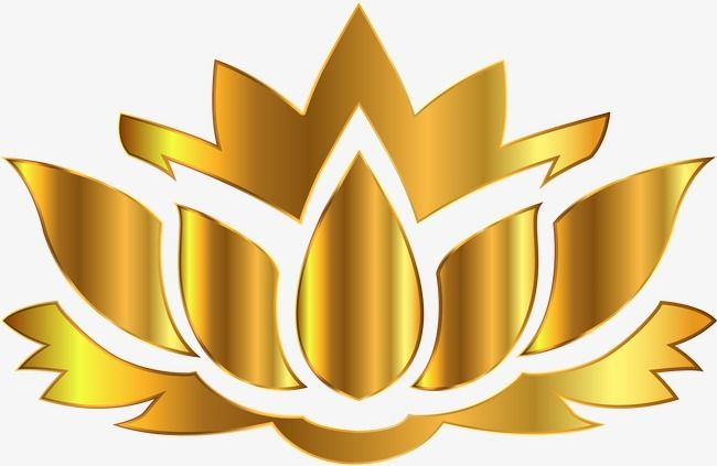 Yellow Lotus Logo Logo Clipart Lotus Clipart Yellow Png Transparent Clipart Image And Psd File For Free Download Lotus Logo Lotus Image Lotus Flower Images