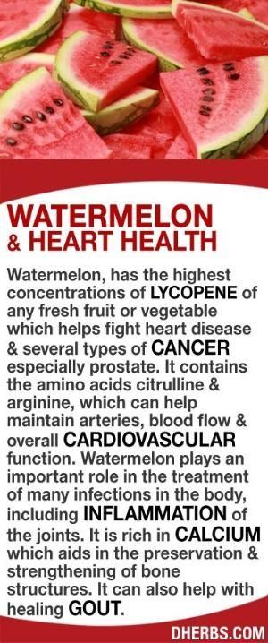 Watermelon, has the highest concentrations of lycopene of any fresh fruit or veggie which helps fight heart disease & several types of cancer. It contains citrulline & arginine, which can help maintain arteries, blood flow & overall cardiovascular function. It helps in the treatment of many infections in the body, including inflammation of the joints. It is rich in calcium which aids in the preservation & strengthening of bone structures. It can also help with healing gout. #dherbs by lucy