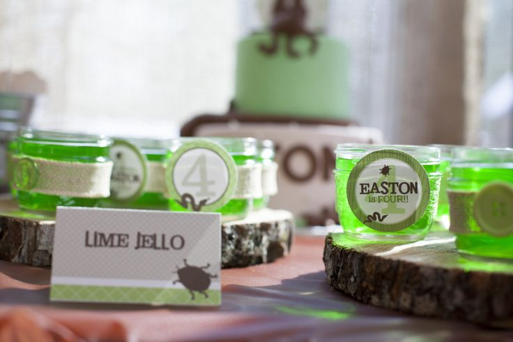 Lime Jello at this Creepy, Crawly Party! #partyfood #kidsparty: Reptiles Party, Crawli Party, Birthday Idea, Birthday Creepy Crawli, Crawli 4Th, Party Idea, Crawli Birthday, 4Th Birthday Creepy, Birthday Party