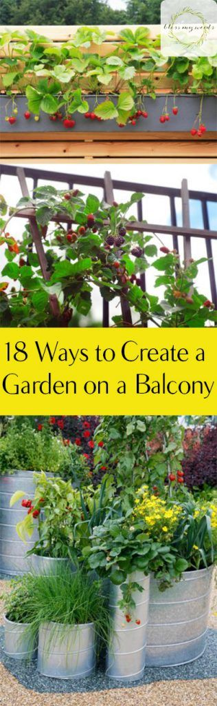 Best 25 balcony garden ideas on pinterest - Garden small space minimalist ...