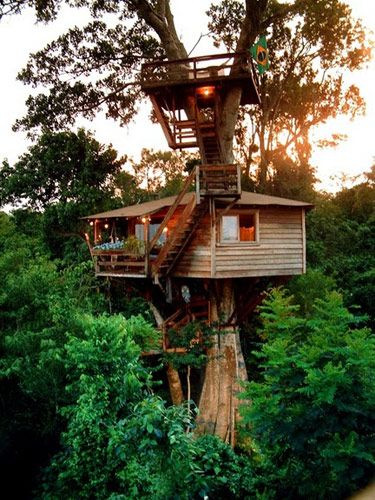 Best TREEHOUSES Images On Pinterest Treehouses Awesome - Contemporary banyon treehouse california