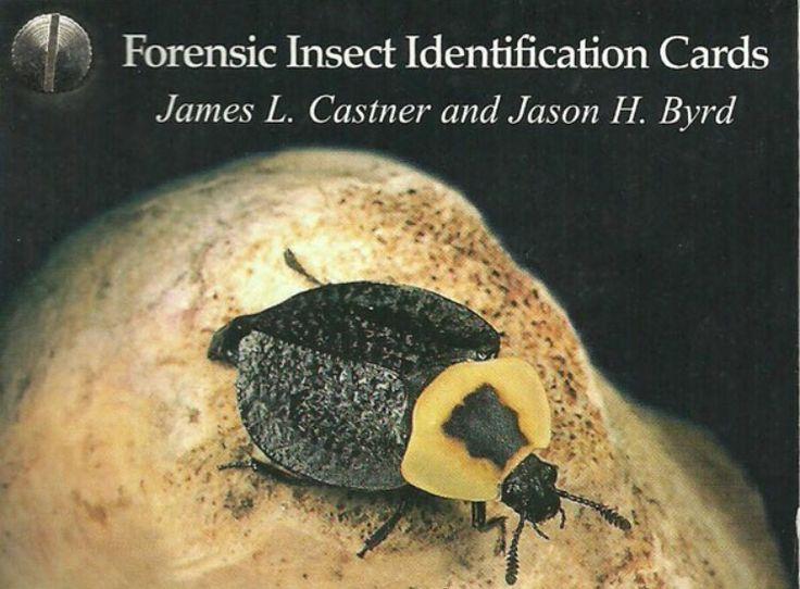 18 best Forensic Entomology images on Pinterest Forensics, Crime - entomology scientist resume